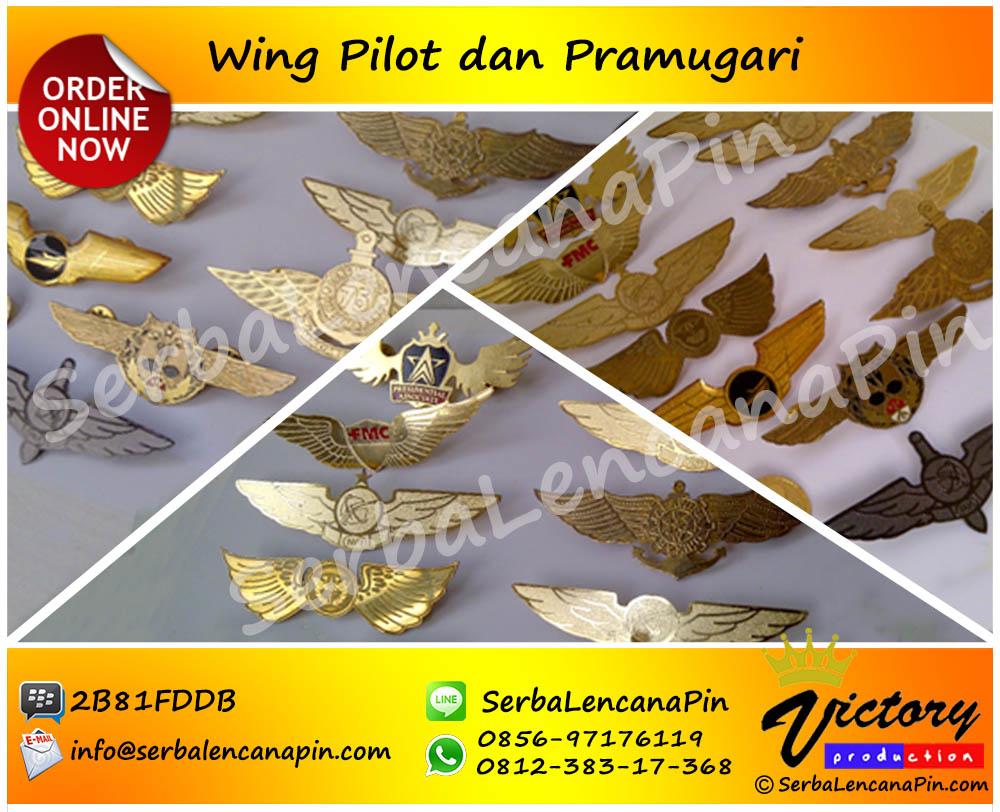 wingpilot_wingpenerbang1